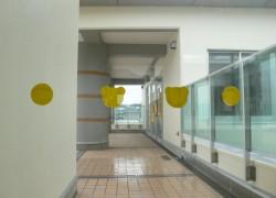 新藤山台小学校